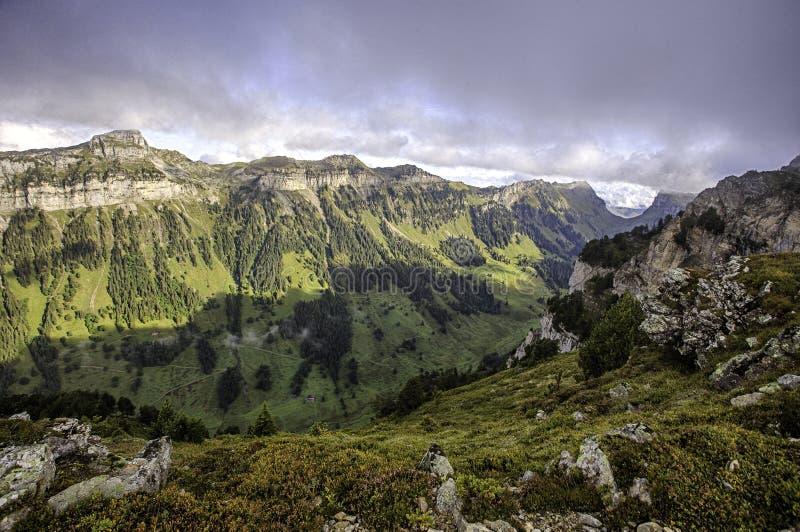 Berne Alpen von der Spitze Niederhorn im Sommer, Bezirk von Bern, die Schweiz, Tapete stockfotos