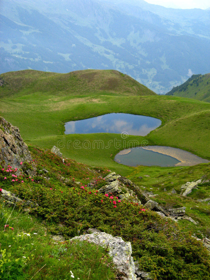 Berner Oberland 15 royalty free stock images