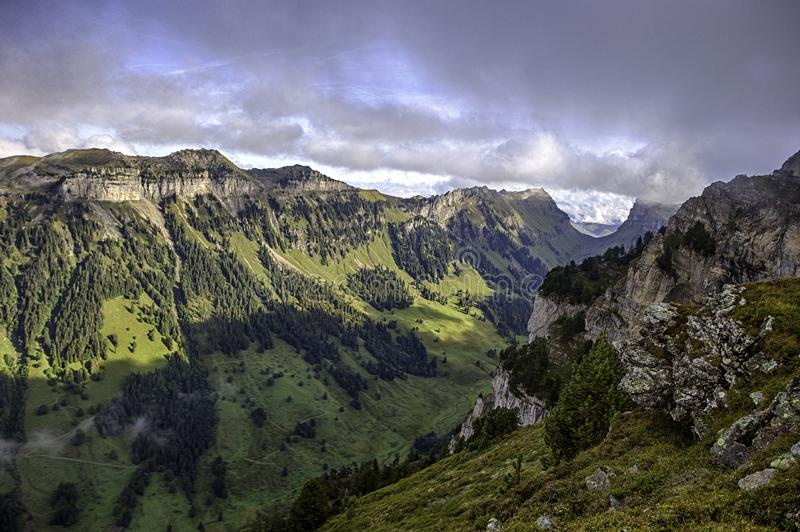 Bernese Alps from the top of Niederhorn in summer, Canton of Bern, Switzerland, wallpaper royalty free stock photos