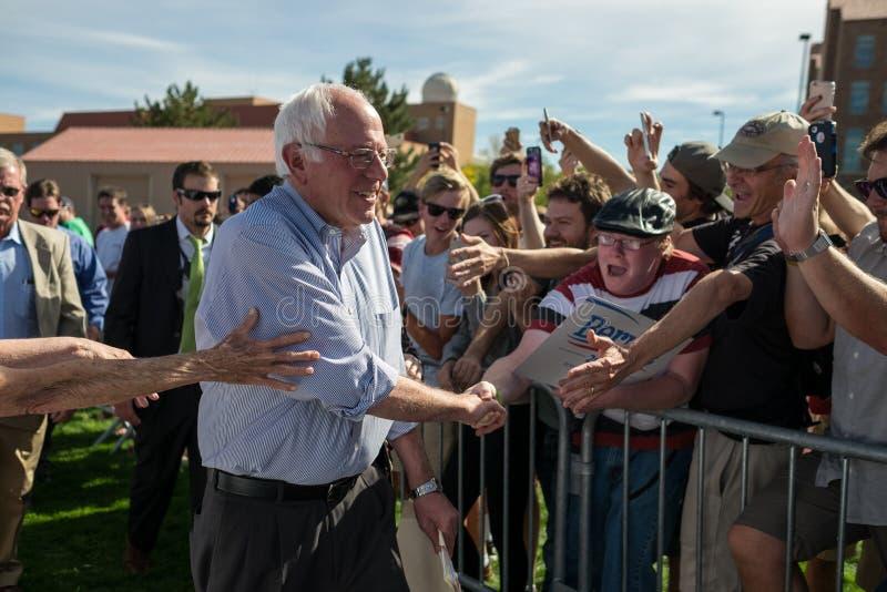 Bernie spotyka Waldo zdjęcia stock