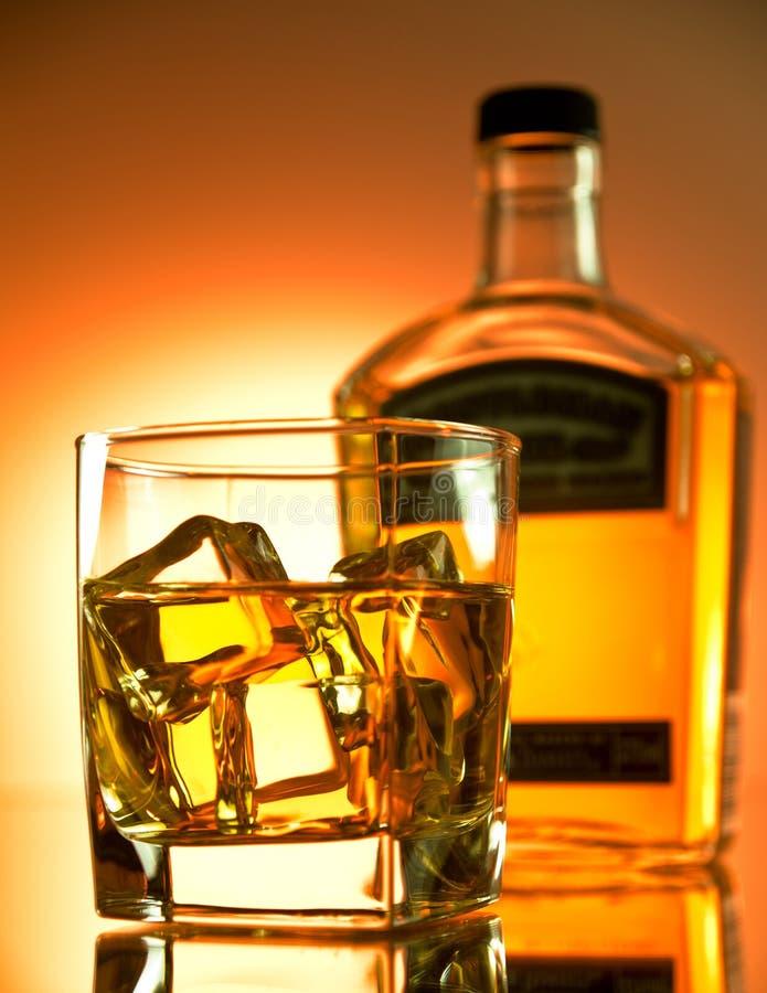 Bernsteinfarbiger Whisky stockfotografie