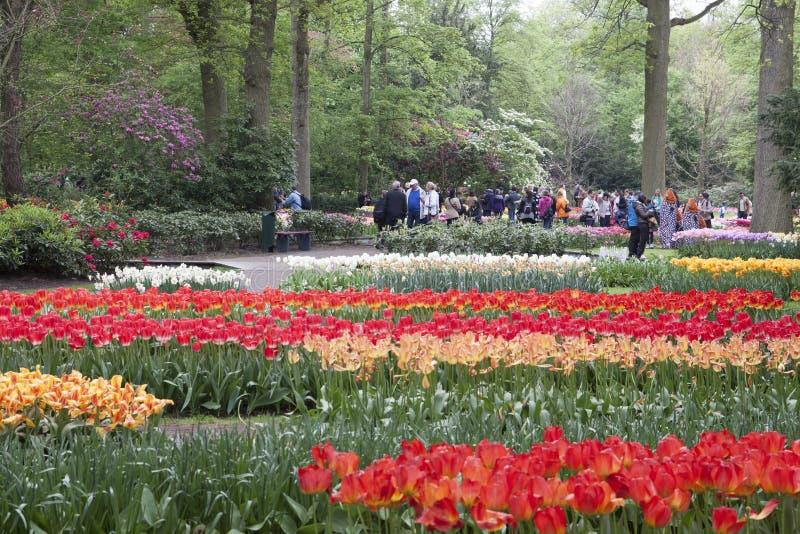 Beroemd Nederlands bloempark royalty-vrije stock afbeeldingen