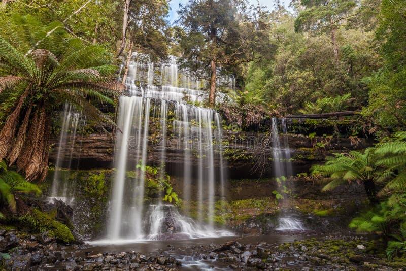Beroemd Russel Falls, zet Gebieds Nationaal Park, Tasmanige op stock afbeeldingen