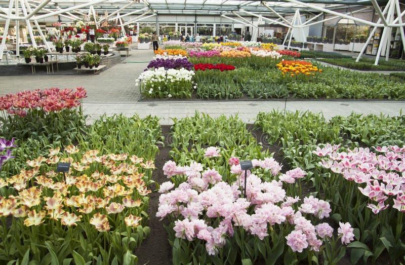 Beroemde bloemtuin stock afbeeldingen