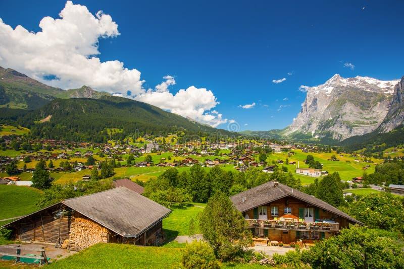 Beroemde Grindelwald-vallei, groen bos, de chalets van Alpen en Zwitserse Alpen, Berner Oberland, Zwitserland royalty-vrije stock foto's
