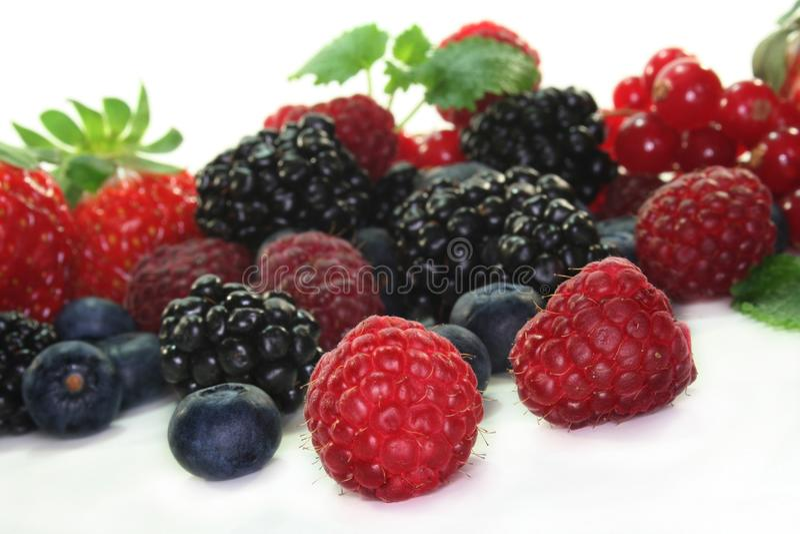 Berries Stock Images