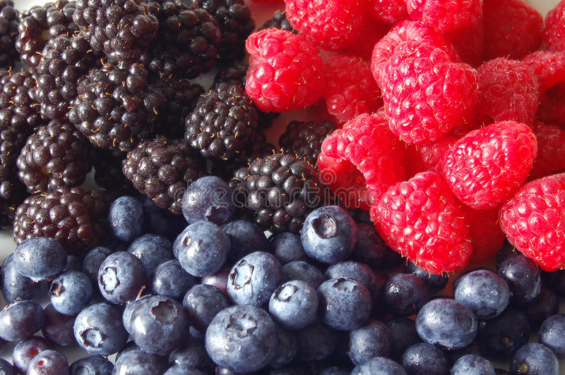 Berries, 3 kinds royalty free stock photo