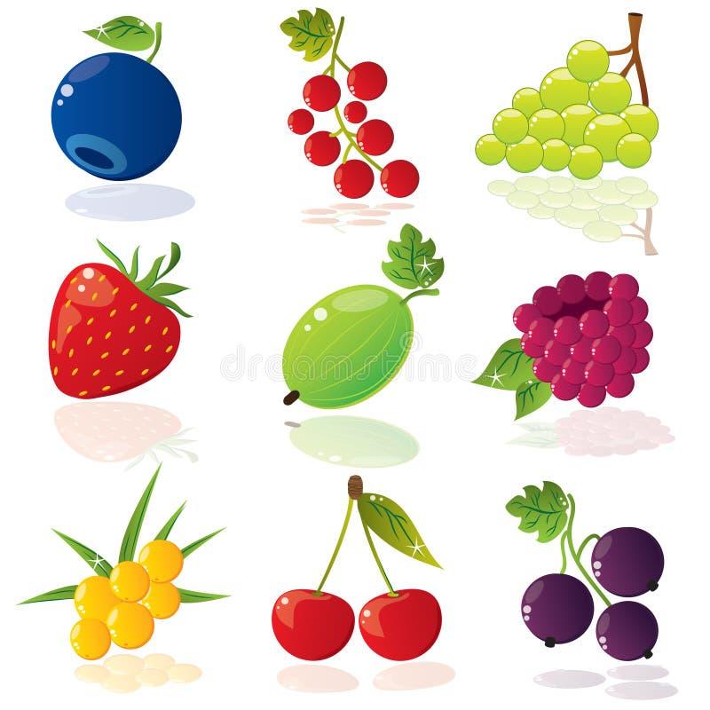 Free Berries Royalty Free Stock Image - 7806836