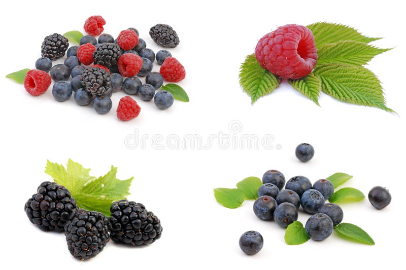 Berries. On white background. Strawberry, blackberry, blueberry and raspberry