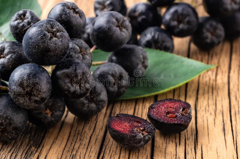 Berries of black mountain ash on a wooden background. Aronia melanocarpa. Therapeutic properties of black mountain ash royalty free stock photo
