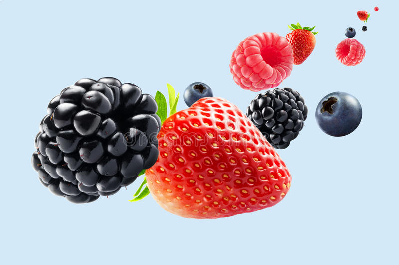 Berries on blue stock images