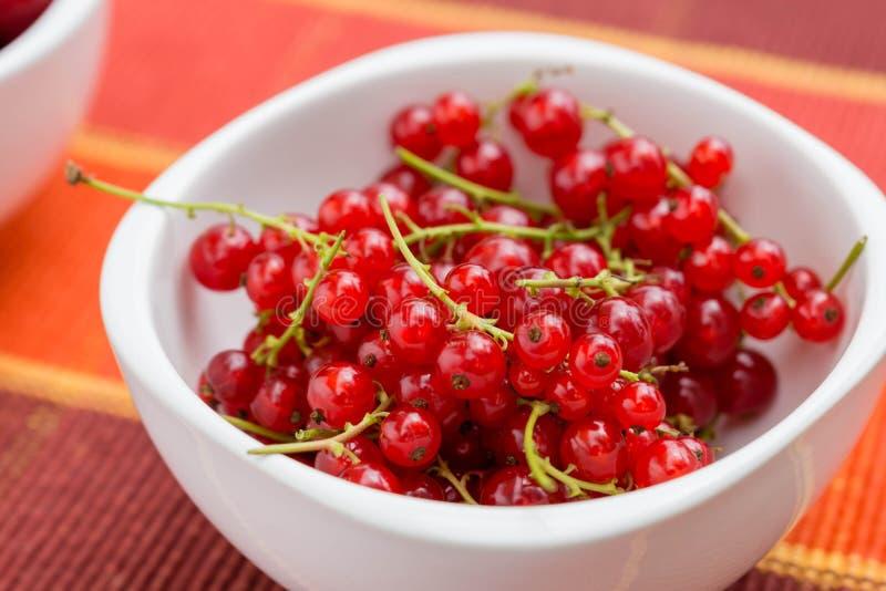 Berries and cherries royalty free stock image