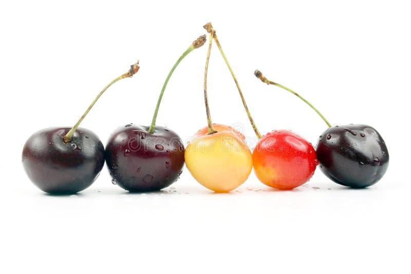Berries cherries on white background. useful vitamin healthy food. The berries cherries on white background. useful vitamin healthy food stock images
