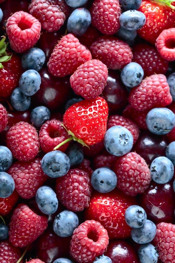 Berries closeup assorted mix royalty free stock photos