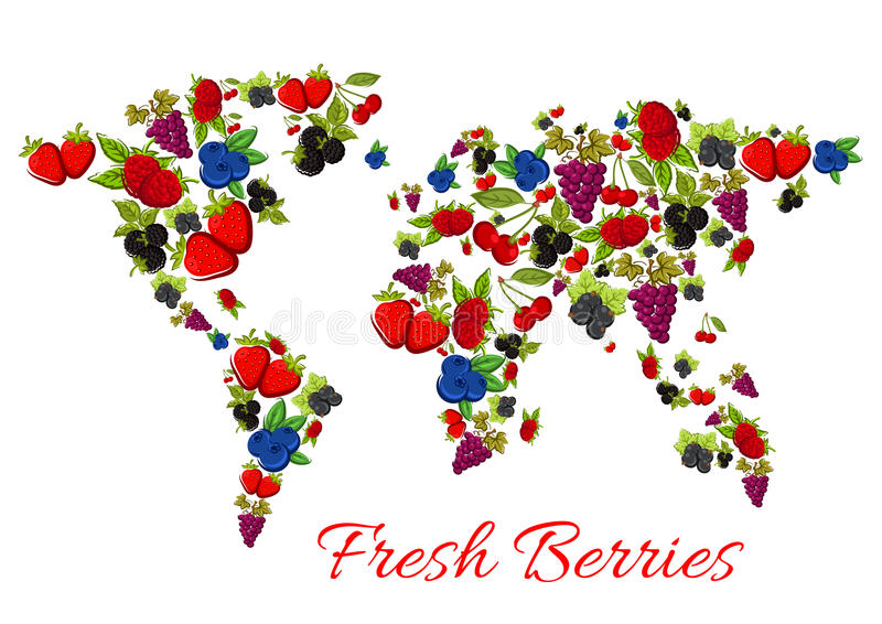Berries Fruits In Vector Shape Of World Map Stock Vector Image - World map shape