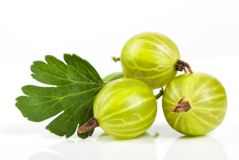 Berries of gooseberry closeup. Ripe juicy sweet berries with green leaf royalty free stock photo