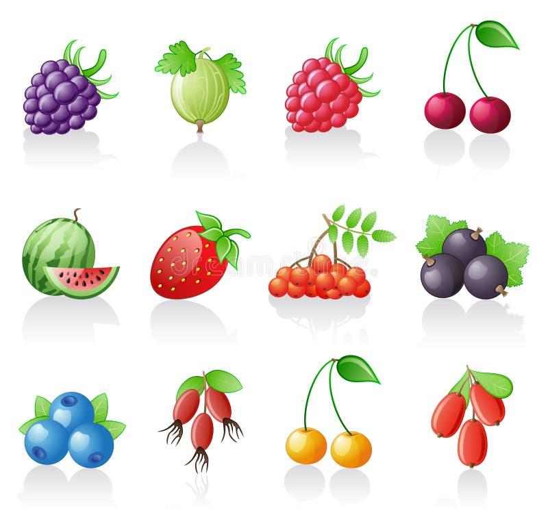 Berries icon set. vector illustration