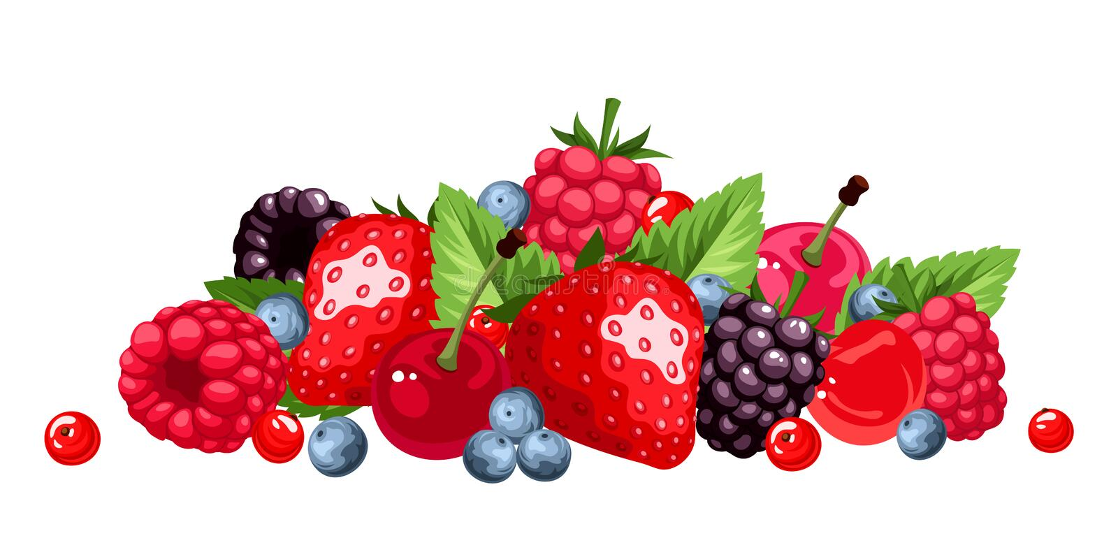 Berries isolated on white. Vector illustration. royalty free illustration