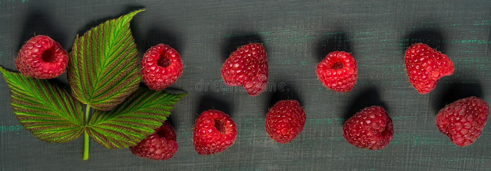 Berries of red raspberries with a green twig lie in a row on a long, black background. Berries of red raspberries with a green twig lie in a row on a long stock photography