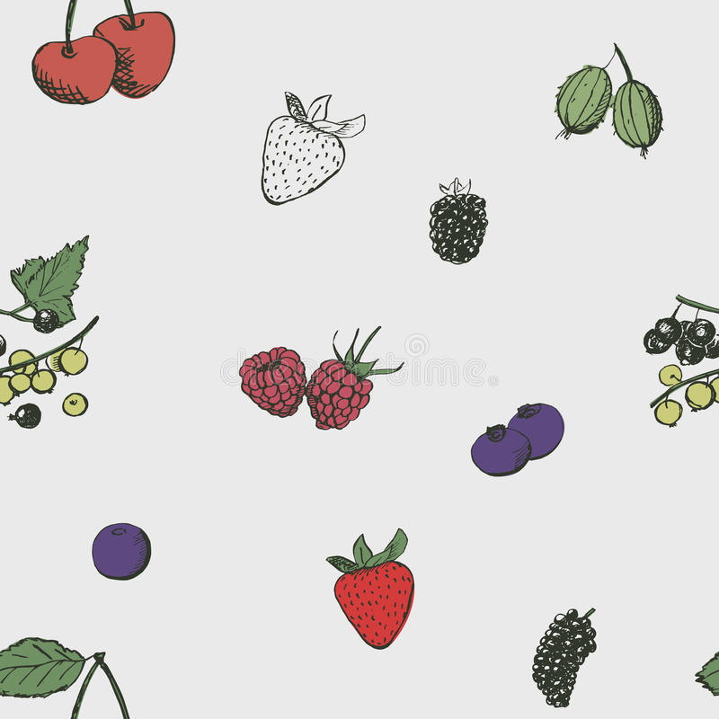 Berries seamless background. royalty free illustration