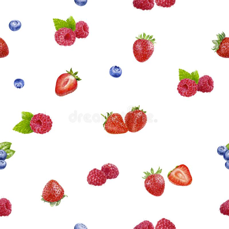 Berries seamless pattern watercolor illustration isolated on white royalty free stock photos