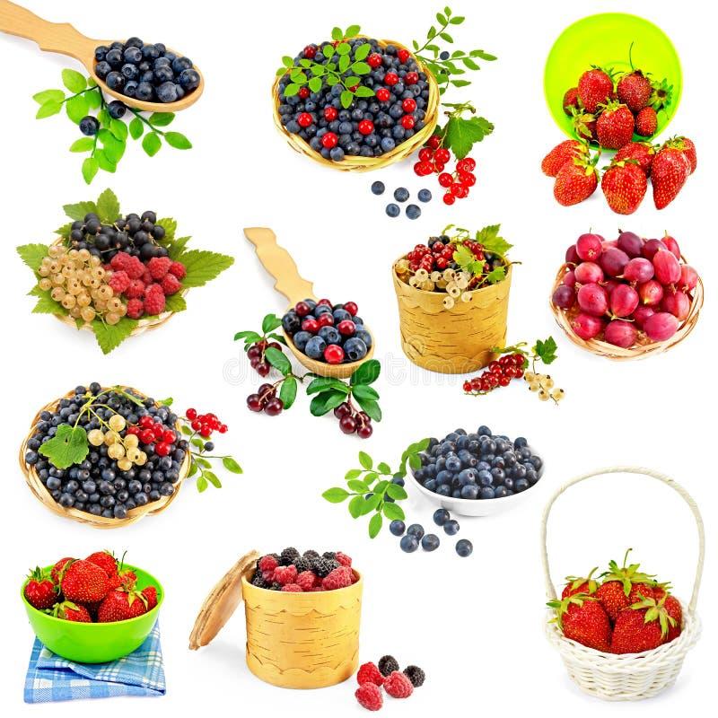 Berries set royalty free stock image