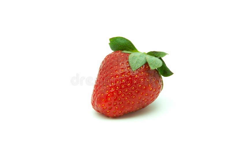Download Berries Of The Strawberry Royalty Free Stock Photography - Image: 5323607