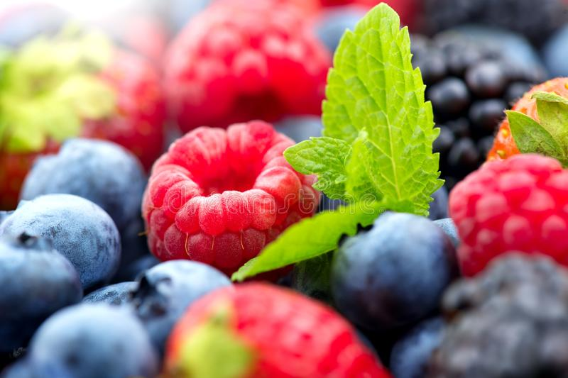 Berries. Various colorful berries background. Strawberry, raspberry, blackberry, blueberry closeup. Over white. Healthy eating stock photos