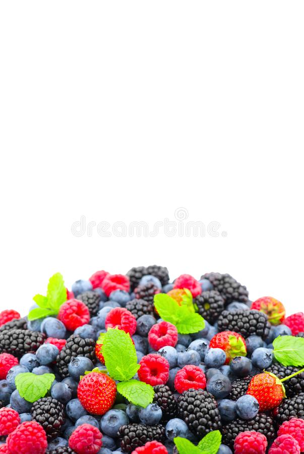 Berries. Various colorful berries background. Strawberry, raspberry, blackberry, blueberry closeup. Over white. Healthy eating royalty free stock photo