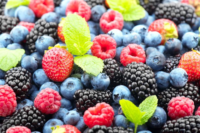 Berries. Various colorful berries background. Strawberry, raspberry, blackberry, blueberry closeup. Healthy eating royalty free stock photos