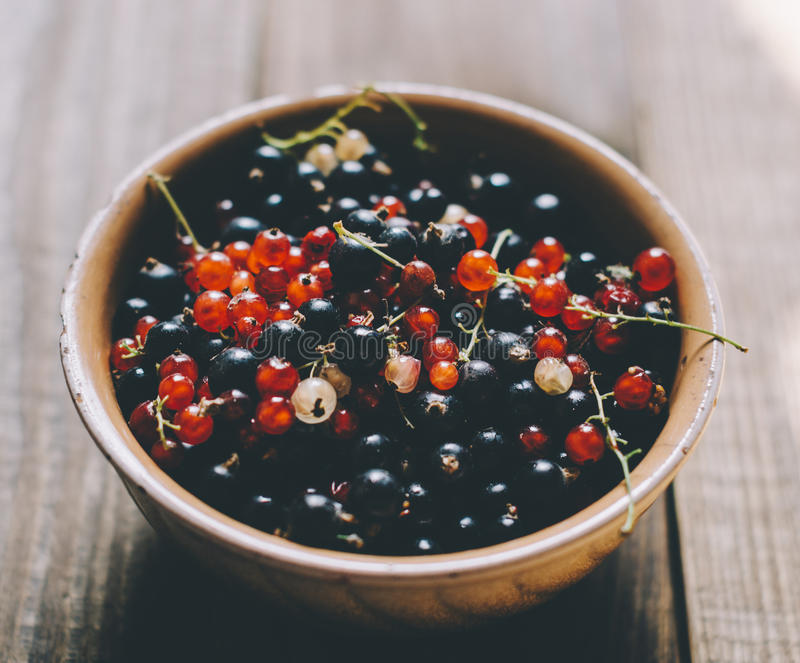Berries On Wooden Table. Berries in plate on Wooden Background. Summer black, red and yellow currant. Agriculture, Gardening, Harvest Conceptn stock photo
