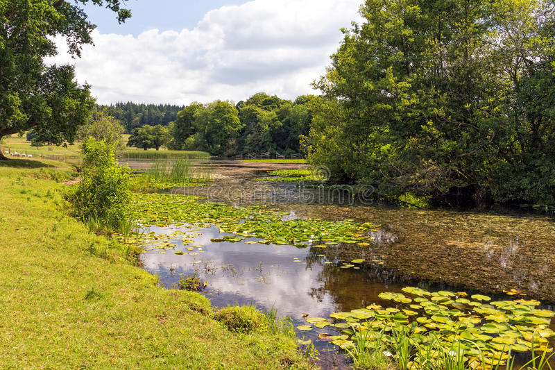 Berrington Hall Lake, Herefordshire, Angleterre images stock