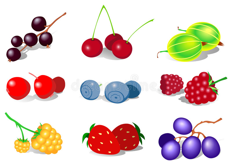 Download Berry stock vector. Image of berry, strawberry, cherry - 4374435