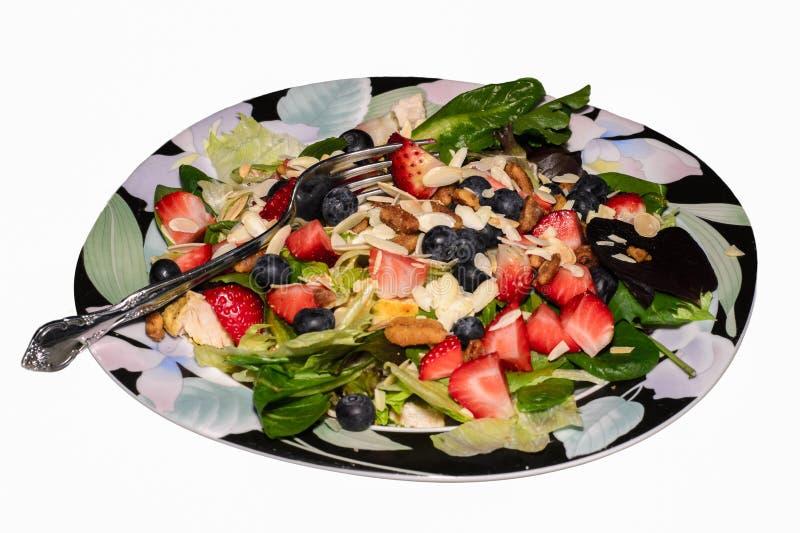 Berry Almond Pecan Chicken Salad imagem de stock royalty free