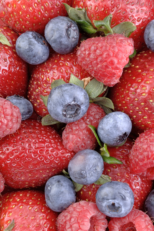 Download Berry Berrylicious 1 stock photo. Image of raspberry, fruit - 120370