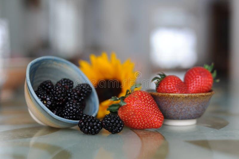 Berry Bowls immagini stock