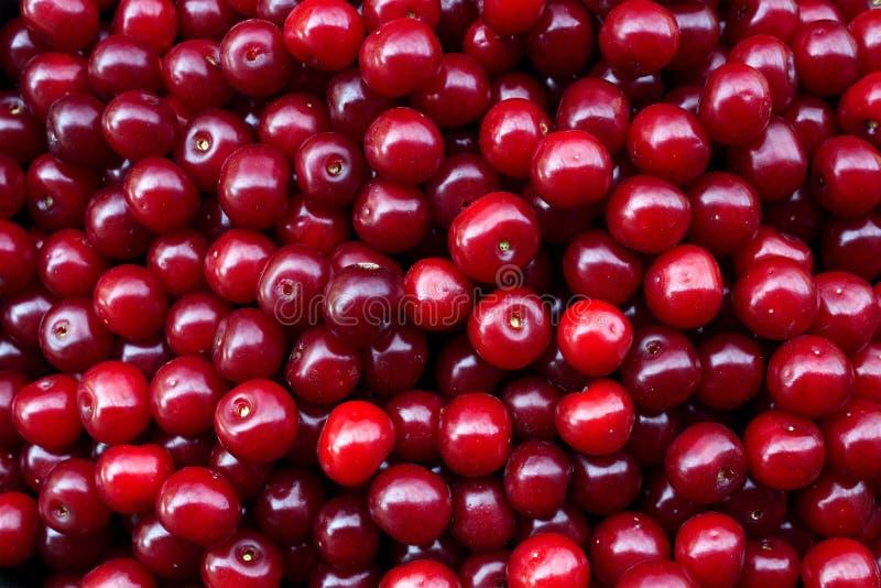 Berry cherry. Fruit just plucked stock photo