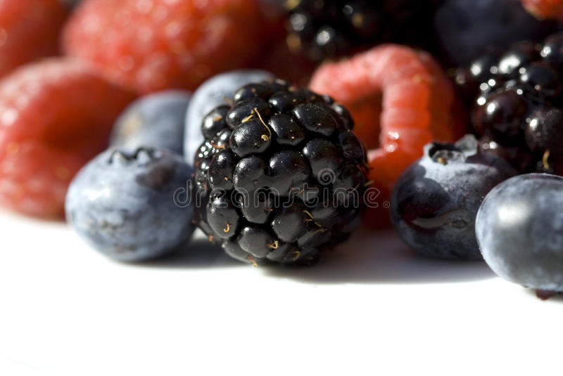 Berry close-up royalty free stock photo