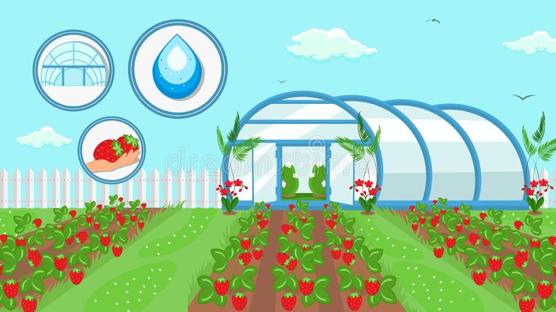 Berry Cultivation Farming Technology Illustration stock abbildung
