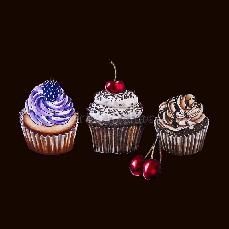 Berry Cupcakes Ilustración de la acuarela libre illustration
