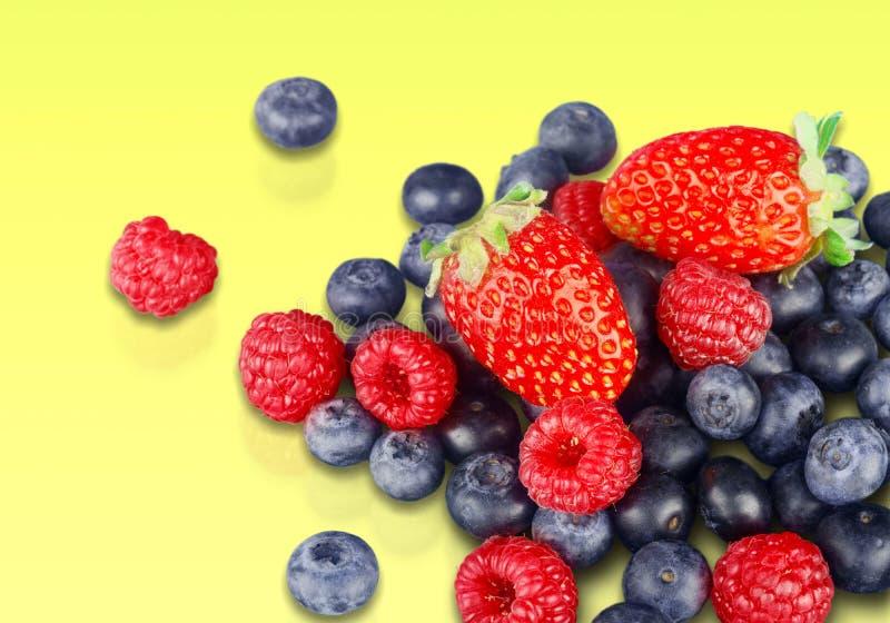 Berry fruit. Fruit variation freshness blueberry red strawberry stock photo