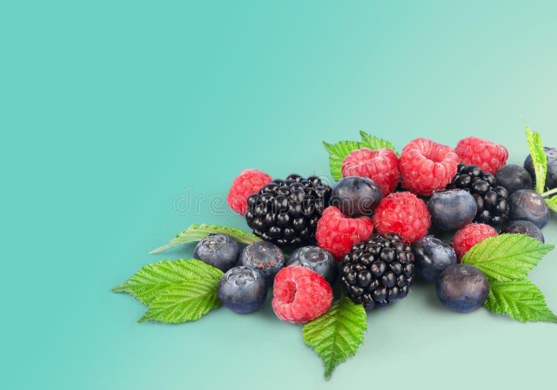 Berry fruit. Raspberry blueberry black blue food stock photos