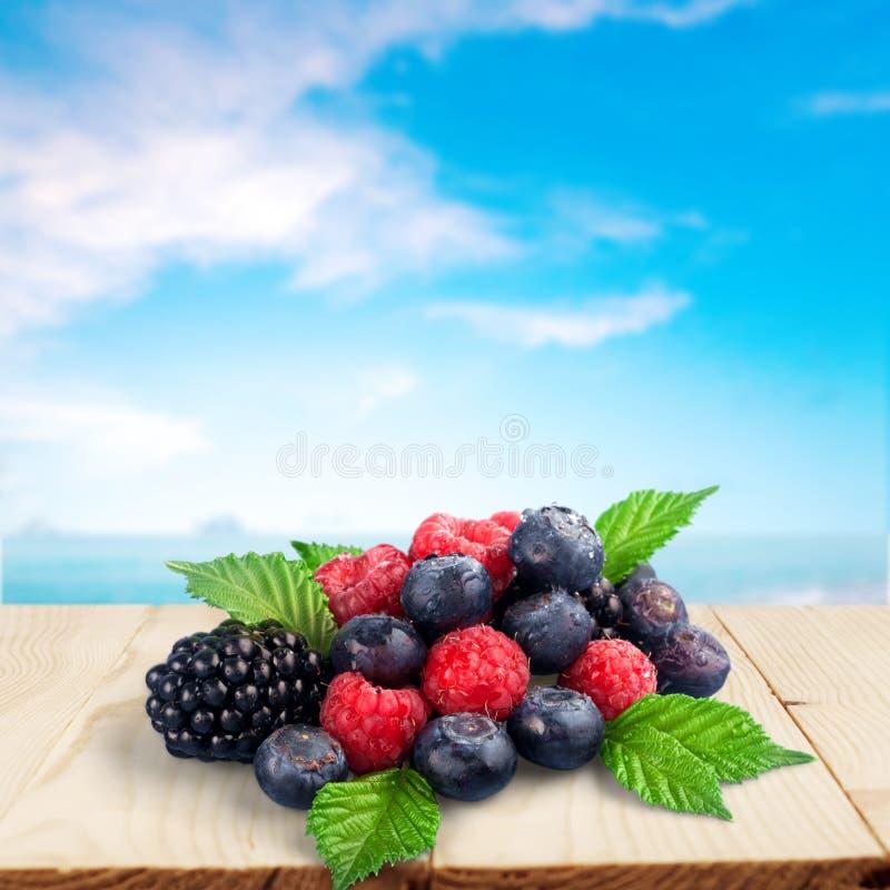 Berry fruit. Raspberry blueberry black isolated blue stock images