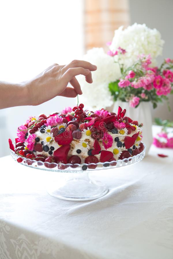 Berry Fruit cake, homemade biscuit cake with cream, in woman hands against of light summer flowers background stock images