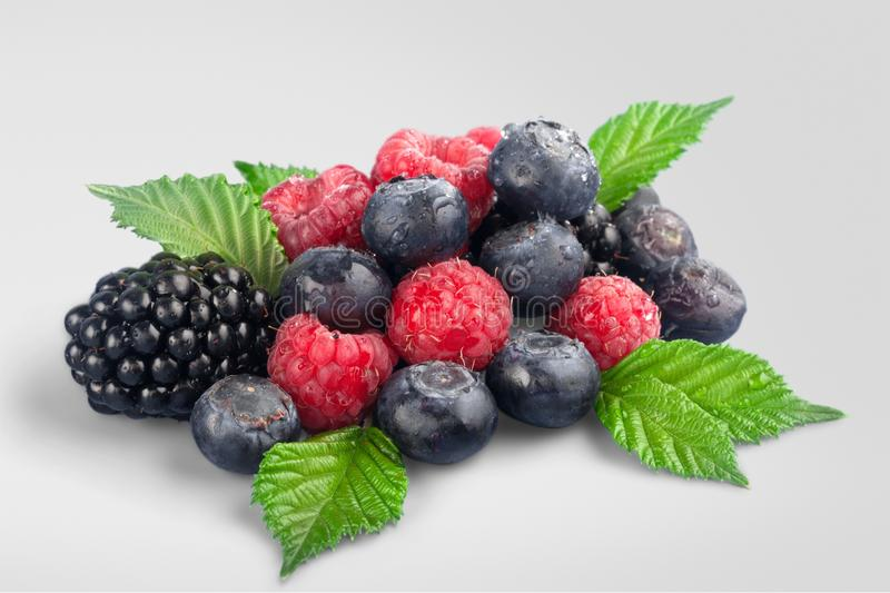Berry Fruit royalty free stock image