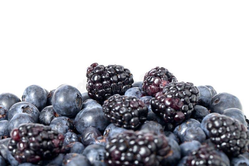 Berry Fruits royaltyfri foto