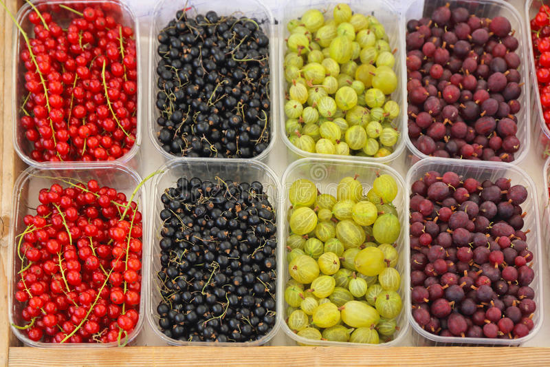 Berry Fruits images stock