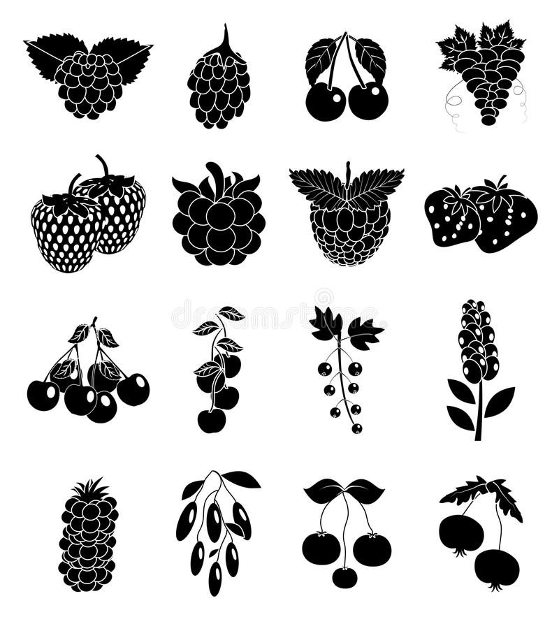 Berry fruits icons set. In black stock illustration