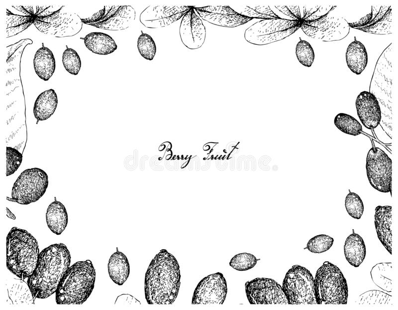 Berry Fruits, Illustration Frame of Hand Drawn Sketch Jambolan, Java Plum, Black Plum or Syzygium Cumini and Japanese Barberies or royalty free illustration