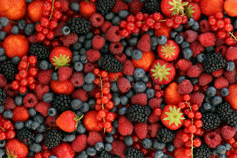 Berry fruits. Like strawberries, blueberries, red currants, raspberries and blackberries forming a background royalty free stock photos